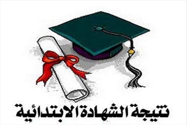 نتيجة الشهادة الابتدائية 2014 محافظة البحيرة