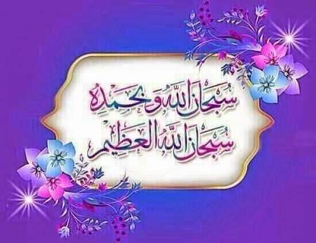 صور سبحان الله وبحمده سبحان الله العظيم (2)