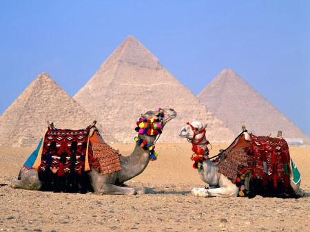 الاهرامات والجيزة والجمال في مصر