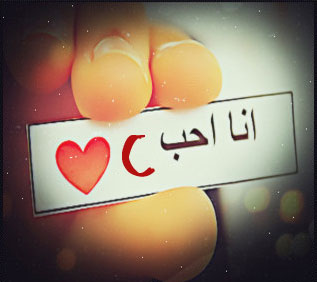 انا احب c