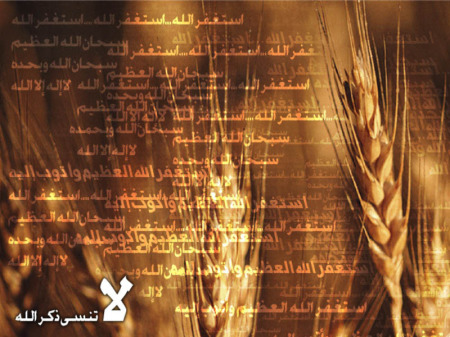 خلفيات اسلامي (5)
