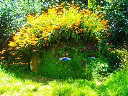 حدائق ديكور