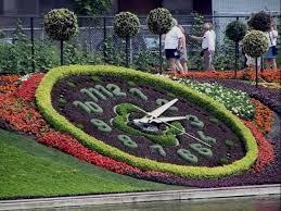 حدائق للفلل