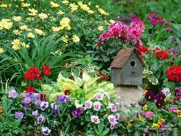 صور حدائق منزلية بسيطة
