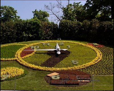 مناظر حدائق