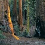 تحميل صور مناظر طبيعية