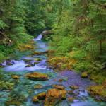 صور مناظر طبيعية خلابة وجميلة (4)