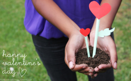 ارقي صور تهنئة بعيد الحب 2015