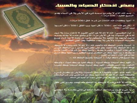صور إسلامية (6)