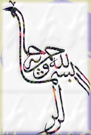 صور إسلامية (9)