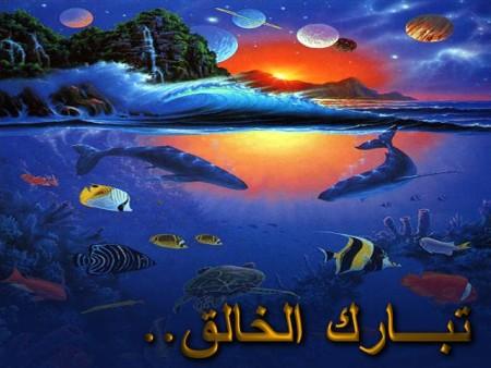 صور اسلاميات (5)
