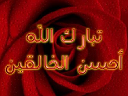 صور اسلاميات (6)