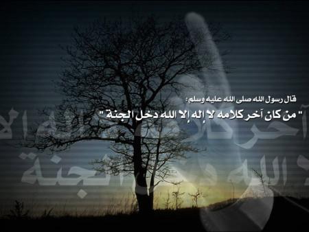 صور اسلامية (6)