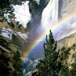 صور الطبيعة (4)