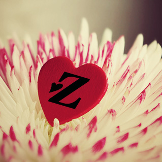صور حرف زد بالانجليزي Z (2)