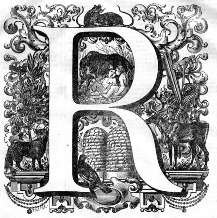 صور حرف R (5)