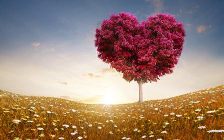 خلفيات وصور قلوب جديدة (2)