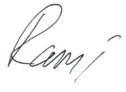 رامي (1)