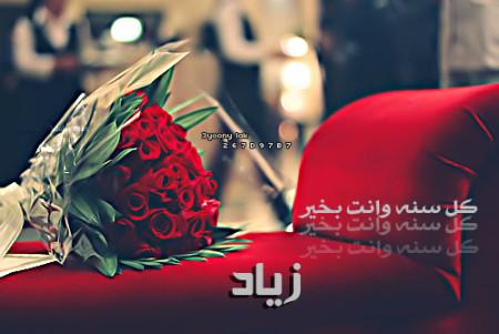 زياد (3)