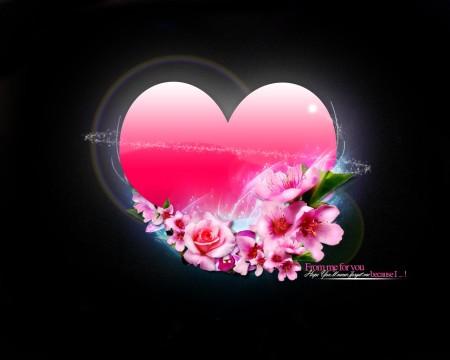 Hearts Photos (2)