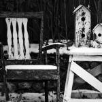 اشكال الكراسي (2)