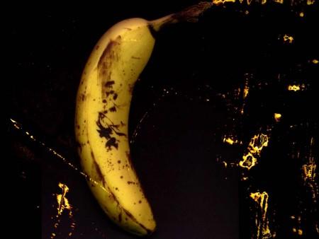الموز (1)
