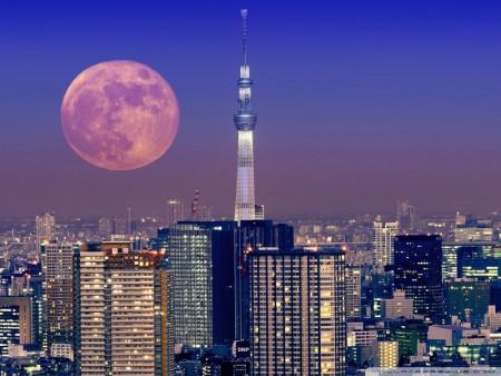 صور القمر (3)