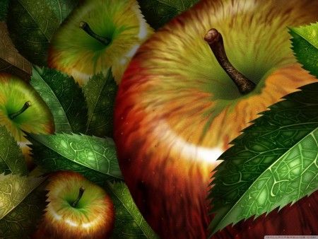 صور تفاح HD (3)