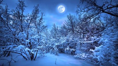 صور دموع القمر (4)