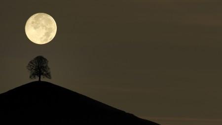 صور-عن-القمر-2