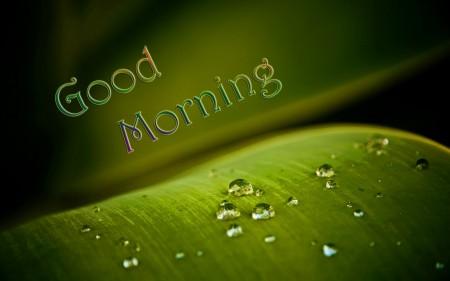صور good morning (4)