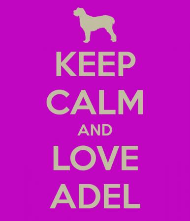 keep calm and love adel (3)