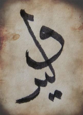 اسم وليد مكتوب علي صور (2)