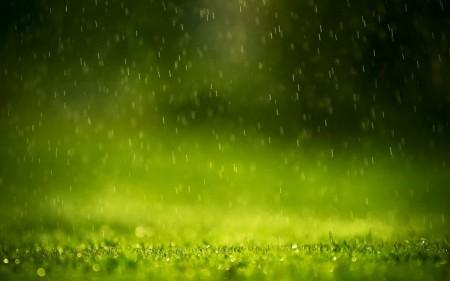 المطر (4)