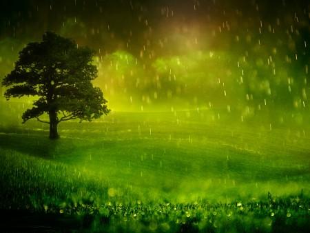 خلفيات مطر (4)