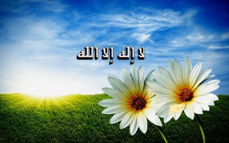 صور وخلفيات لا اله الا الله (3)