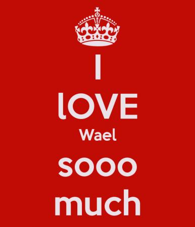 keep calm and love wael (3)