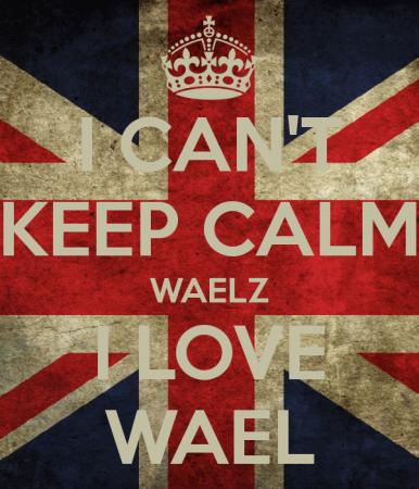 wael love (1)