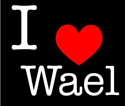 wael love (2)