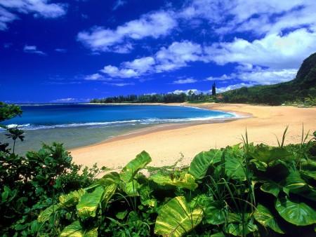 بحر جميل وجذاب جدا (1)