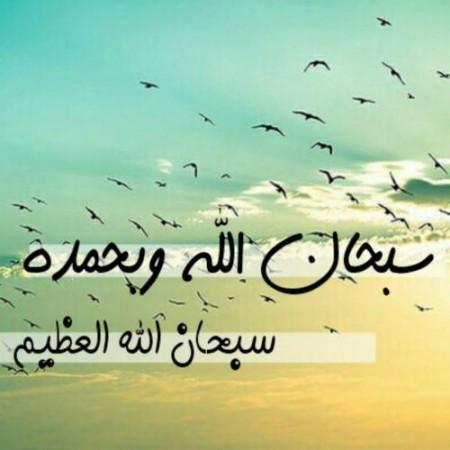 سبحان الله وبحمده (3)