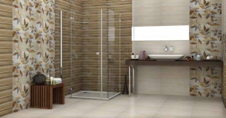 سيراميك الحمام (1)