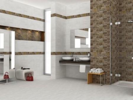 سيراميك حمامات أرضيات (2)
