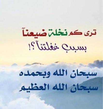صور اسلاميه (1)