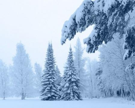 صور الشتاء والثلوج (1)