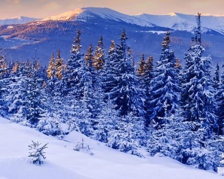 صور الشتاء والثلوج (2)
