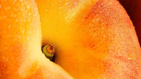 صور خوخ برتقالي (2)