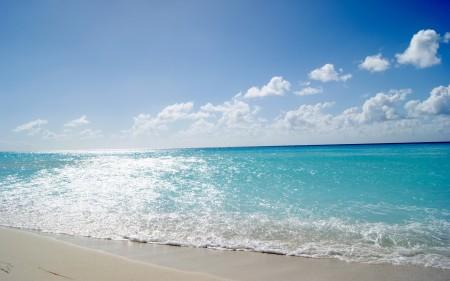 صور شواطئ (3)