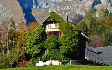 مخططات منازل من الخارج (2)