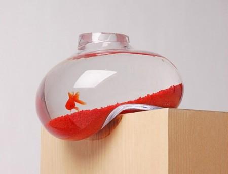 اسماك جميلة (1)